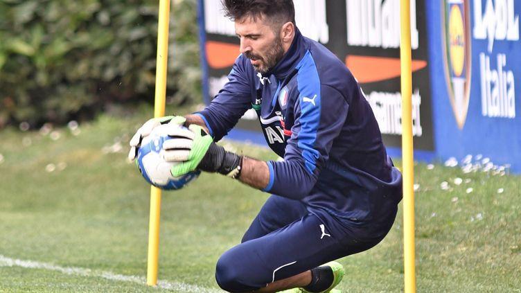 Un millier de rencontres professionnellesvendredi 24 mars pourGianluigi Buffon, à l'occasion du match Italie-Albanie. (MAXPPP)