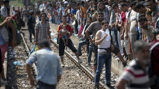 Des migrants attendent un train à la gare deGevgelija (Macédoine), près de la frontière grecque, le 15 août 2015. (STOYAN NENOV / REUTERS)