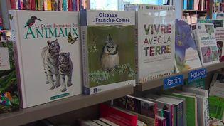 Ventes : les libraires retrouvent le sourire (FRANCEINFO)