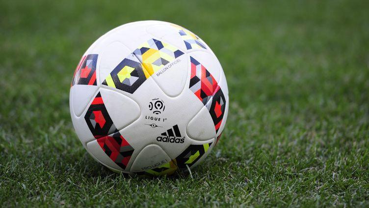 Le ballon officiel de la saison de L1 2016-2017 (FRANCK PENNANT / AFP)