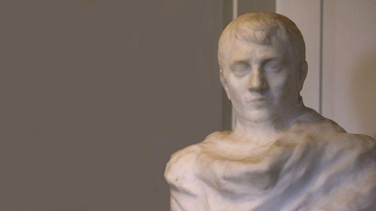 Le Napoléon de Rodin à Madison, en octobre 2017  (Bob Karp / AP / Sipa)