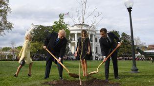 Donald Trump et Emmanuel Macron plantent un chêne offert par le présidnet français, le 23 avril 2018 dans les jardins de la Maison Blanche. (JIM WATSON / AFP)