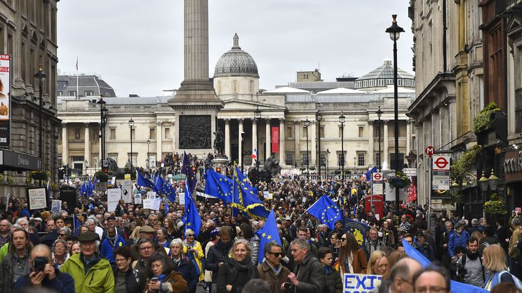 Des manifestants réclament un nouveau référendum sur le Brexit,à Londres (Royaume-Uni), samedi 23 mars 2019. (ALBERTO PEZZALI / NURPHOTO / AFP)