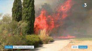En raison de la sécheresse et des vents violents, un incendie s'est déclaré dimanche 23 août au bord de l'A7, à Vitrolles (Bouches-du Rhône). (FRANCEINFO)