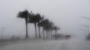 Des automobilistes sous la pluie à Jacksonville, en Floride, le 6 octobre 2016, peu avant l'arrivée de l'ouragan Matthew. (JEWEL SAMAD / AFP)
