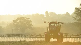Un agriculteur répand de l'herbicide à base de glyphosate dans un champ, le 16 septembre 2019 à Saint-Germain-sur-Sarthe (Sarthe). (JEAN-FRANCOIS MONIER / AFP)