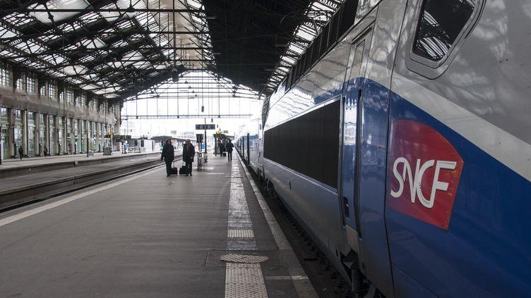 """La SNCF est actuellement scindée en trois établissements publics. Le gouvernement a déjà annoncé vouloir la transformer en """"société nationale à capitaux publics"""", dont les titres seraient incessibles. (DAVID SEYER / CROWDSPARK/ AFP)"""