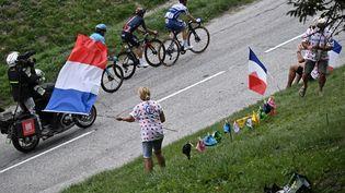 Des drapeaux tricolores le long de la route du Tour de France, le 16 septembre 2020. (ANNE-CHRISTINE POUJOULAT / AFP)