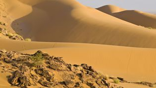 Les migrants ont trouvé la mort dans le désert nigérien, non loin d'Arlit. (EMILIE CHAIX / PHOTONONSTOP / AFP)