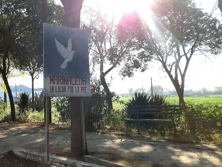 """Le panneau d'entrée dans le village : """"Marinaleda, en lutte pour la paix"""". (ISABELLE LABEYRIE / RADIO FRANCE)"""
