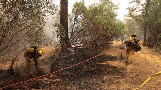 Des pompiers se battent contre l'incendie Carr, en Californie, le 28 juillet 2018. (BOB STRONG / REUTERS)