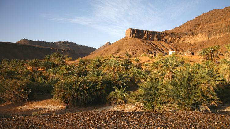Adrar, au sud d'Atar, en Mauritanie où devaient se rendre les touristes italiens, le 4 mars 2010. (NICOLAS THIBAUT / PHOTONONSTOP)