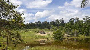 Certaines populations d'Amazonie, éloignées de toute administration, peinent à se faire reconnaître officiellement. (APU GOMES / AFP)