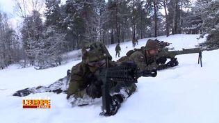 Manoeuvres militairesen Pologne. (FRANCE 3 / FRANCETV INFO)