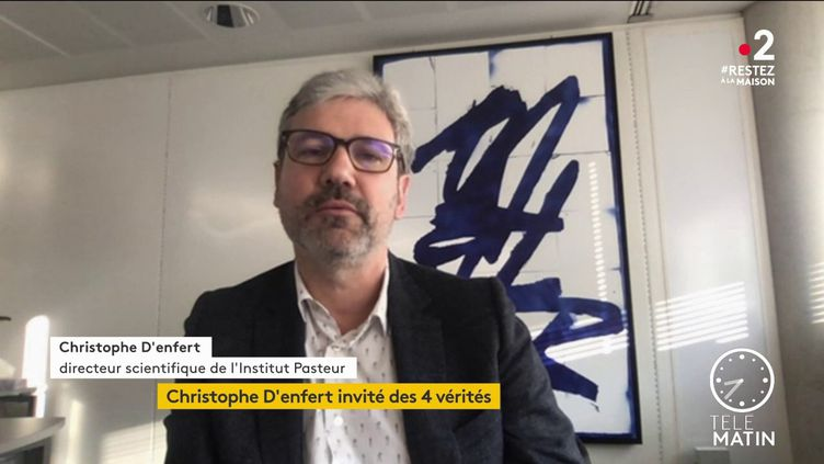 Christophe D'enfert, directeur scientifique de l'Institut Pasteur. (France 2)