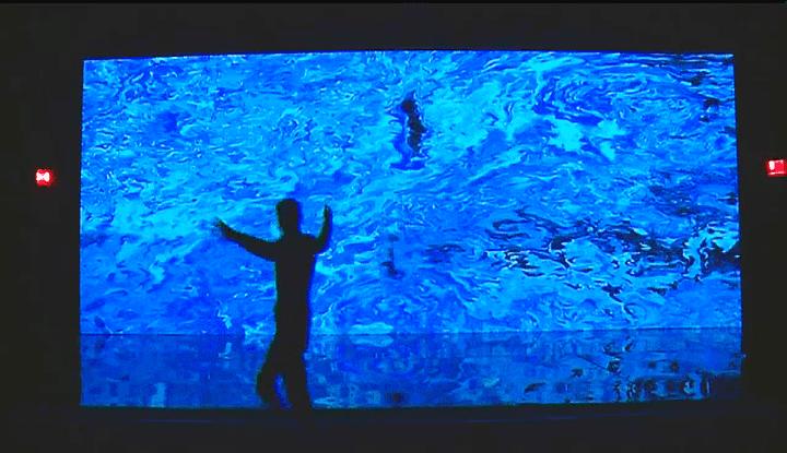 LePixel liquide de Miguel Chevalier  (France 3 / Culturebox )