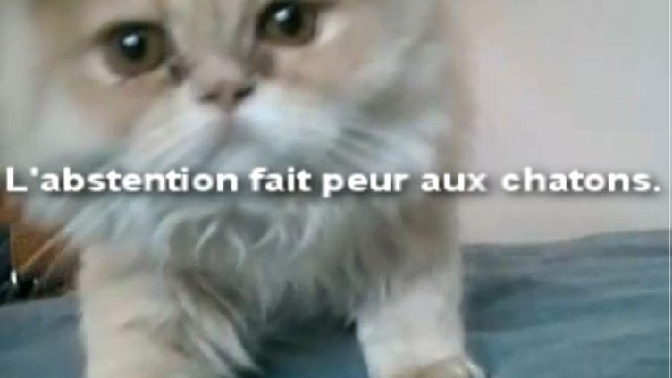 Capture d'écran d'une vidéo de campagne de l'équipe d'Eva Joly, mise en ligne lundi 12 décembre 2011. (DR)