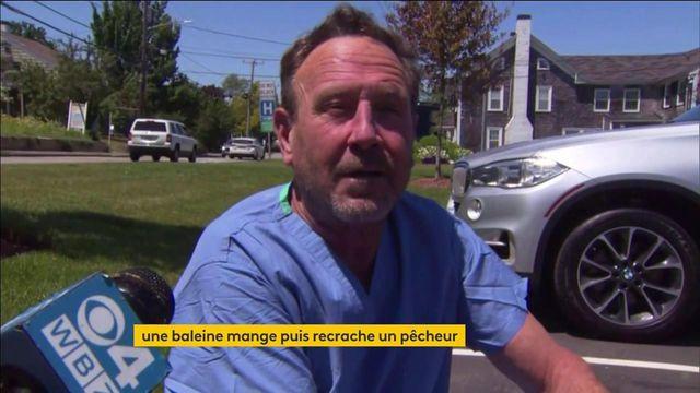 États-Unis : un pêcheur mangé puis recraché par une baleine