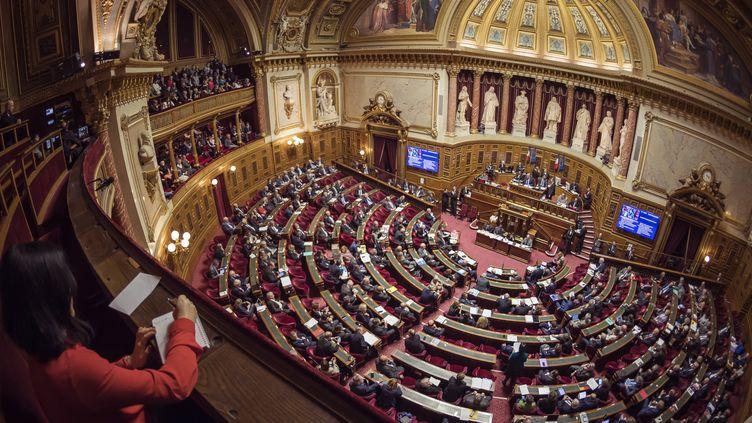 Les sénateurs siègent au palais du Luxembourg à Paris, le 17 novembre 2016. (LIONEL BONAVENTURE / AFP)