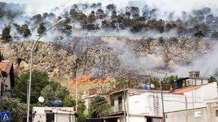 Les environs de Palermo, Sicile (Italie), ravagéspar des incendies, le 16 juin 2016  (MAURO UJETTO / NURPHOTO / AFP)