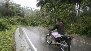 Certaines routes sont bloquées parles arbres tombés après le passage d'Irma, jeudi 7 septembre, àSamana en République dominicaine. (TATIANA FERNANDEZ / AP /SIPA)