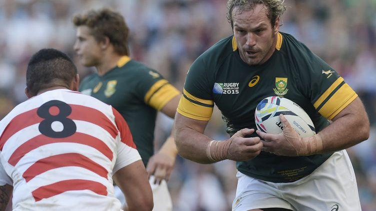 Jannie du Plessis de retour avec les Springboks (LIONEL BONAVENTURE / AFP)