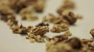 La noix de Grenoble est une appellation d'origine protégée. (CAPTURE ECRAN FRANCE 2)