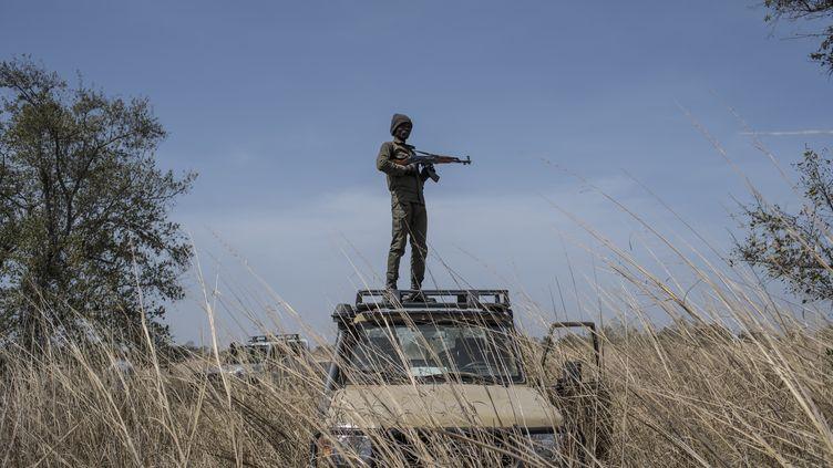 Un ranger du parc national de la Pendjari en patrouille sur son véhicule, le 10 janvier 2018 près de Tanguieta (Bénin). (STEFAN HEUNIS / AFP)
