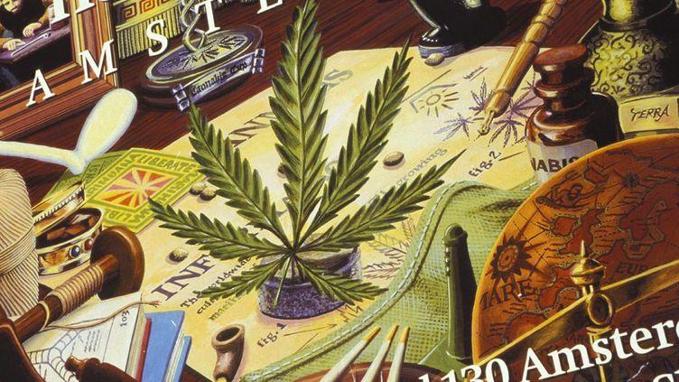 Illustration artistique: feuille de Cannabis, Amsterdam (AFP /Richard Nebesky / Robert Harding Heritage / robertharding)