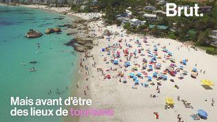 VIDEO. La moitié des plages de sable dans le monde pourraient bientôt disparaître (BRUT)