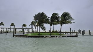 Les vents soufflent au passage de l'ouragan Irma,dans l'archipel des Keys (Floride, Etats-Unis), le 9 septembre 2017. (GASTON DE CARDENAS / AFP)