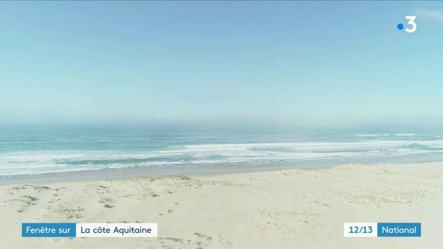 Fenêtre sur la côte Aquitaine entre dune et forêt