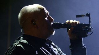 Peter Gabriel sur scène à Dublin le 10 décembre 2014  (SI1 / WENN.COM / Sipa)