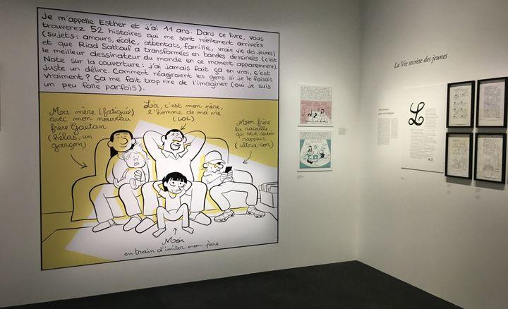 """Image des Cahiers d'Esther"""", exposition """"L'écriture dessinée""""  (Laurence Houot - Culturebox)"""