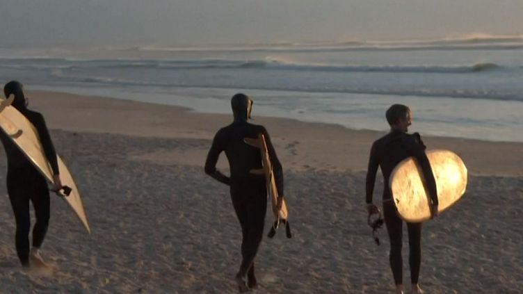En Afrique du Sud, des surfeurs pratiquent désormais leur sport sur des planches en bois, plus écologiques. (France Info)