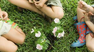 Des enfants jouent ensemble dans l'herbe. Photo d'illustration. (MICHÈLE CONSTANTINI / MAXPPP)