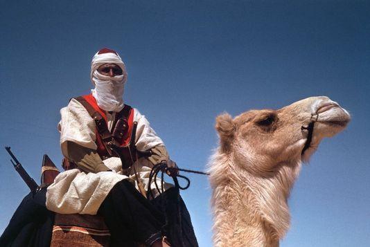 Tunisie 1943, un soldat français et son chameau photographié par Robert Capa  (Robert Capa / International Center oh Photography New York)