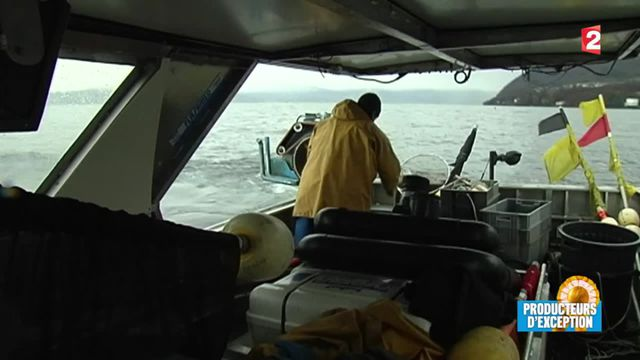 Lac Léman : à la rencontre d'un pêcheur d'exception