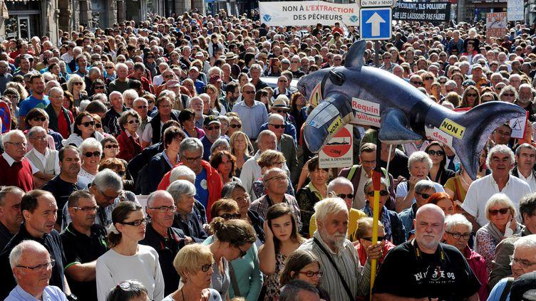 Des manifestants défilent à Lannion (Côtes-d'Armor) contre l'extraction de sable dans la baie, le 11 septembre 2016. (FRED TANNEAU / AFP)