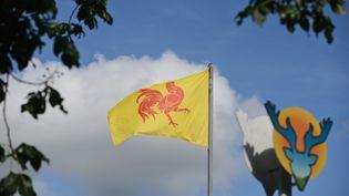 Le drapeau de la Wallonie, photographié le 24 juin 2016. (MAXPPP)