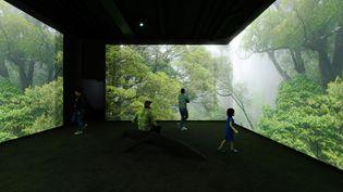 """Bienvenue dans l'alvéoles 3 de l'exposition """"L'Odyssée sensorielle"""", la forêt tropicale, à partir du 23 octobre au Muséum d'Histoire naturelle de Paris. (SENSORITY ODYSSEY)"""