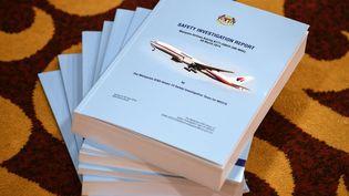 Le dernier rapport sur la disparition du vol MH370 a été présenté ce lundi 30 juillet. (MOHD RASFAN / AFP)