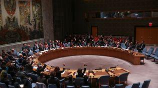 Le Conseil de sécurité de l'ONU a adopté à l'unanimité une résolution, vendredi 20 novembre, qui appelle tous les pays à faire tout leur possible pour combattre l'organisation Etat islamique. (CEM OZDEL / ANADOLU AGENCY)