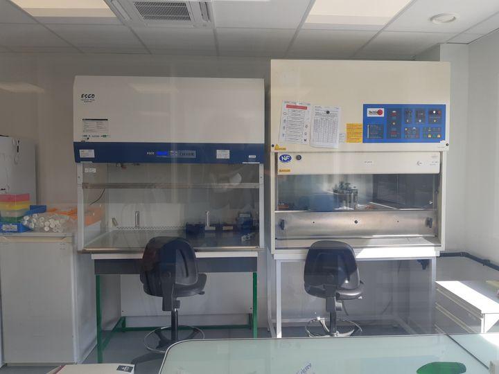 Un des laboratoires où sont élaborés les réactifs du test de dépistage. (JÉRÔME JADOT / RADIO FRANCE)