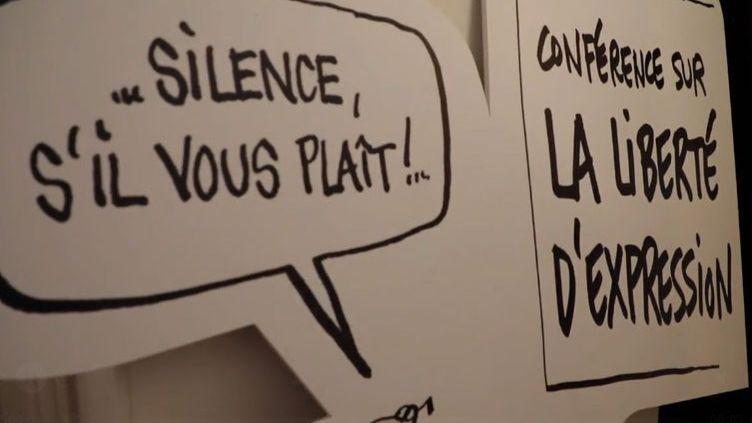 Les dessinateurs de presse se battent dans tous les pays pour le liberté d'expression (FRANCEINFO)