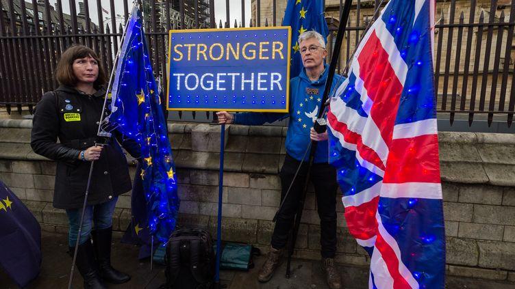 Des manifestants opposés au Brexit devant le Parlement britannique, le 30 janvier 2020 à Londres (Royaume-Uni). (WIKTOR SZYMANOWICZ / NURPHOTO / AFP)