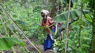 Une membre del'association Walo en Côte d'Ivoire, le 20 mai 2021. (ISSOUF SANOGO / AFP)