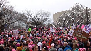 Pendant la Marche des femmes contre Donald Trump, à Washington D.C., samedi 21 janvier 2017. (MARIE-ADELAIDE SCIGACZ / FRANCEINFO)