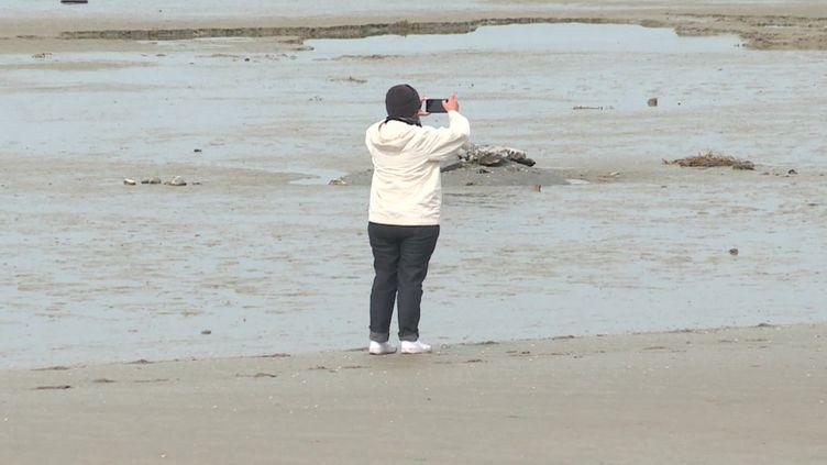 Les grandes marées ont leur public au Crotoy (FRANCE 3)