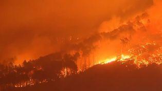 L'incendie ravageant la Toscane. (FRANCE 2)
